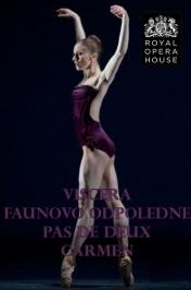 Komponovaný program několika baletních děl