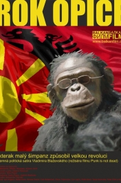 Rok opice