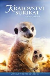 Království Surikat: Příběh začíná